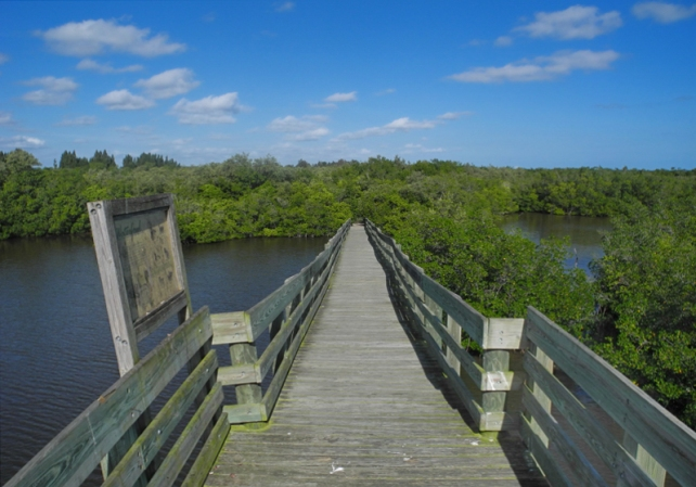 Oslo Riverfront Conservation Area observation tower.  The entrance to the 336-acre conservation area is located on Oslo Road east of U.S. Highway One.