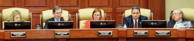IV.021313.City Council 2