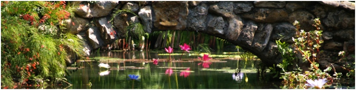 Saturday, Oct. 1 - McKee Botanical Garden Community Appreciation Day, 10 a.m. to 5 p.m