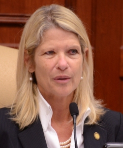 State Rep. Debbie Mayfield - little to show for her efforts.