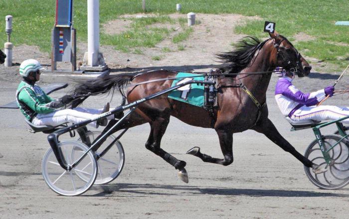 Saratoga race track - 2 9