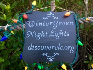 sign-in-mangroves-2-wintergreen-night-lights-2016