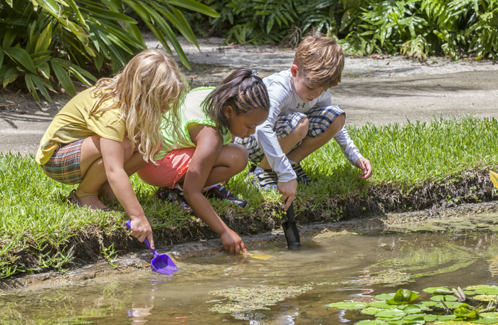 Registration Now Open For Camp Mckee Nature Adventure Indian River Guardian