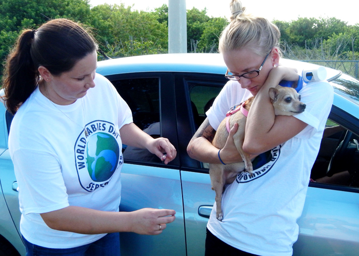 Humane Society staffers Aubrey Mallory and Emily Hartin vaccinate a dog against rabies. The Humane Society will hold its free drive-thru rabies vaccination clinic on Sunday, September 25 from 5-7 p.m. for Indian River County residents.