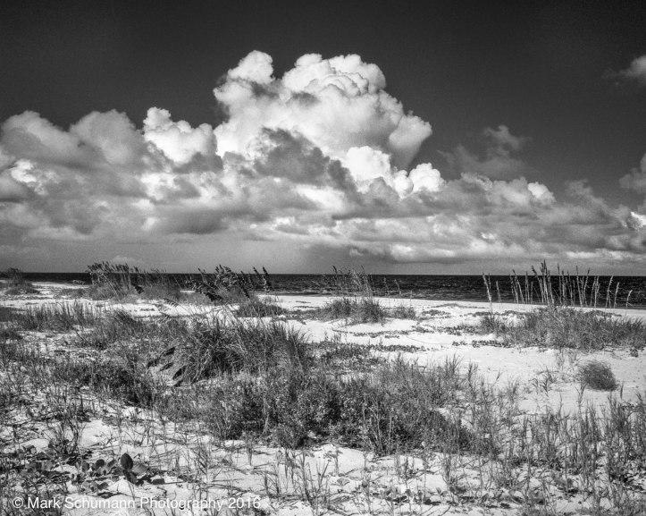 vero-beach-castaway-cove-dune-line