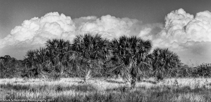 building-afternoon-storm-west-of-vero-beach_020817